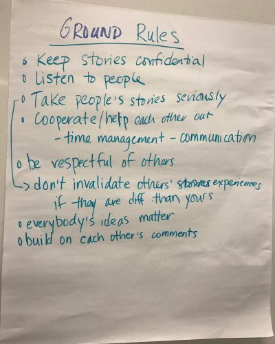 Somali young adult research team's ground rules